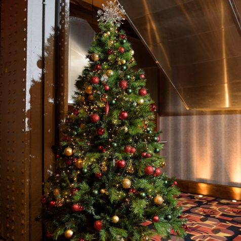 Qube Events Christmas Trees