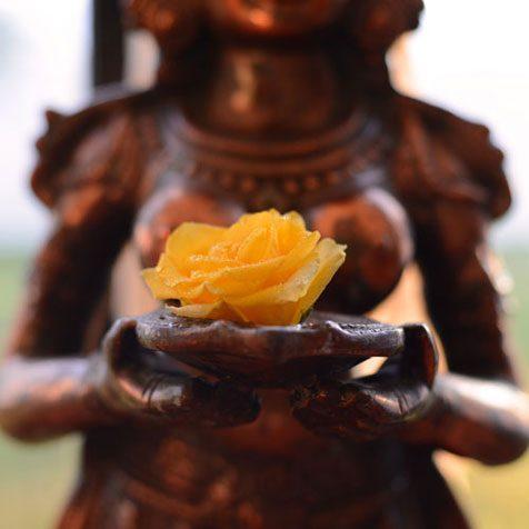 Asian Wedding floristry3